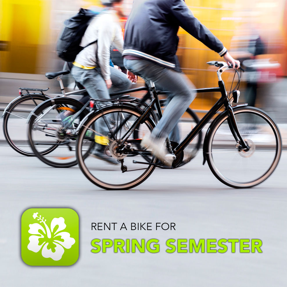 Rent A Bike – Spring Semester