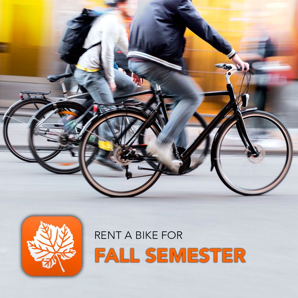 Rent a bike - Copenhagen - Fall semester 2016